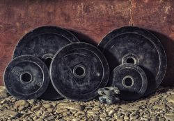 strength training workout plans