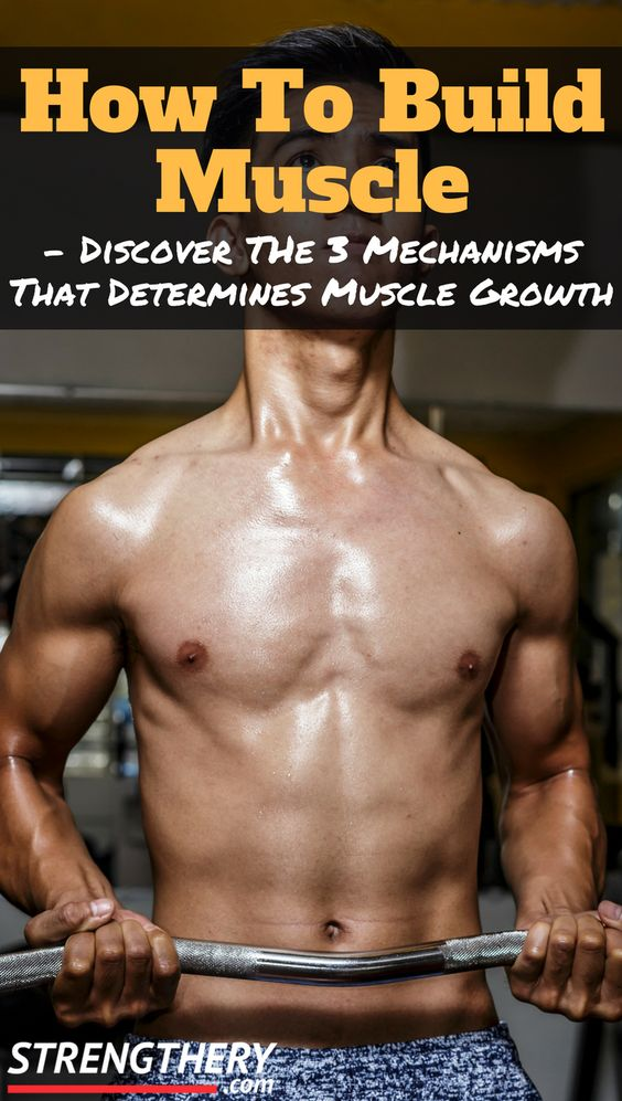 Discover the three underlying mechanisms for how muscle grow. Changes are that you have already read a lot about how to build muscle mass, but are you familiar with these 3 fundamental mechanisms? Read this article explaining muscle growth. #fitness #workout #musclegrowth #howtobuildmuscle #howtobuildmusclemass #buildmuscle #gainmuscle #howtogainmuscle #musclehypertrophy #myofibrillarhypertrophy #sarcoplasmichyptertrophy #whenmusclesgrow