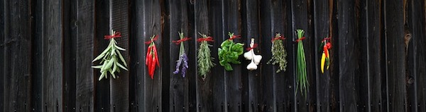 herbs and spices are good for your gut